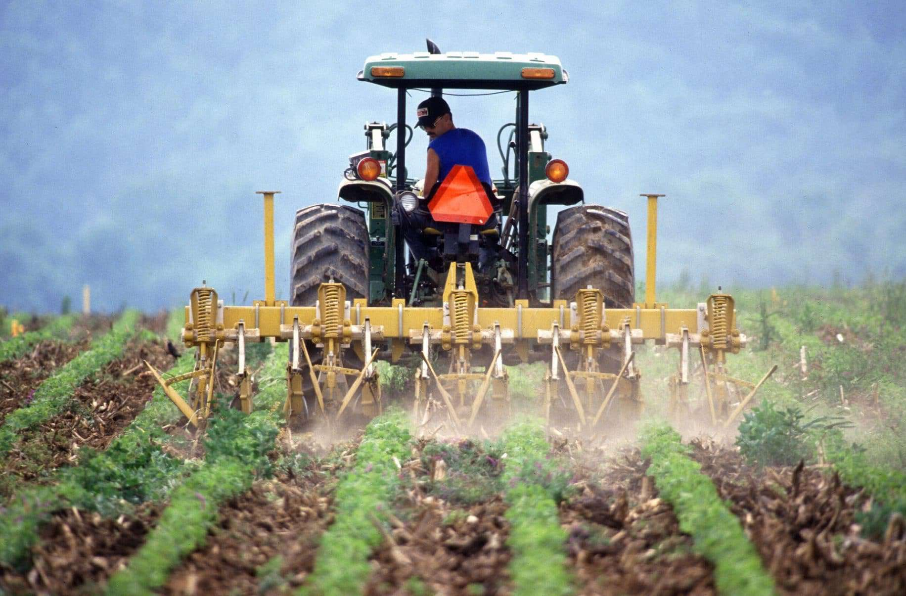 White House Admits Tariffs Are Hurting Farmers As It Plans Relief Program