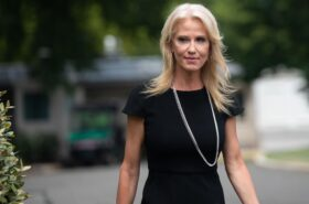 Kellyanne Conway inspired Lincoln Project attacks on Donald Trump