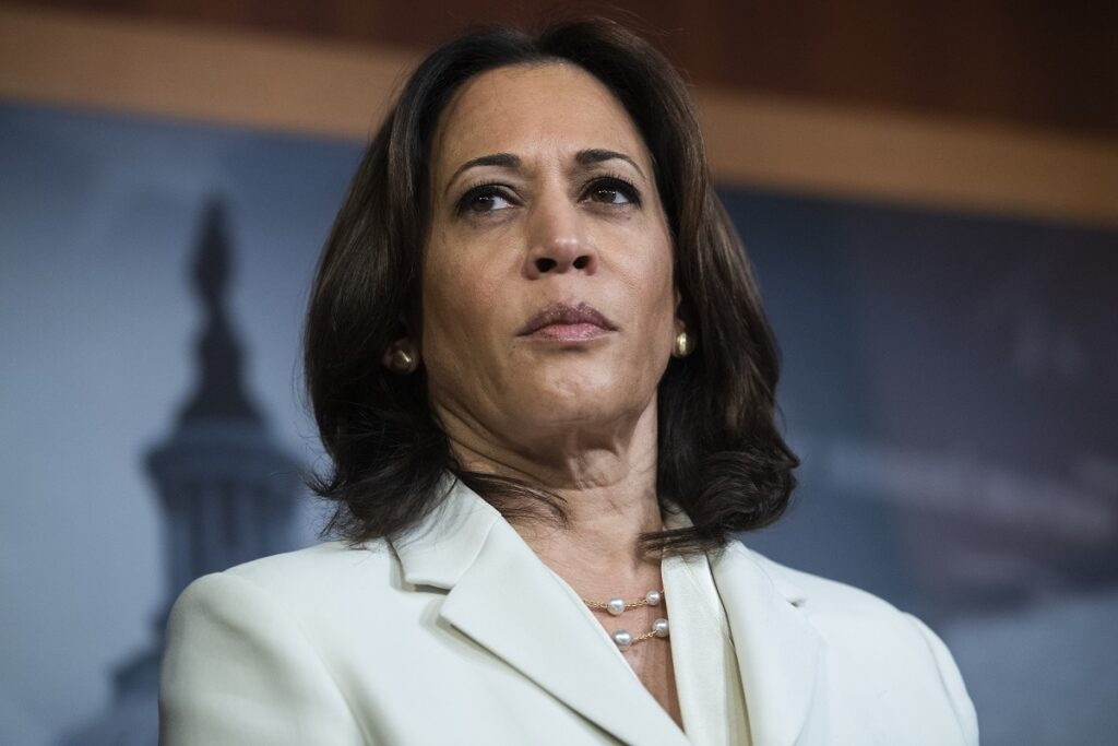 Kamala Harris already under attack by Donald Trump